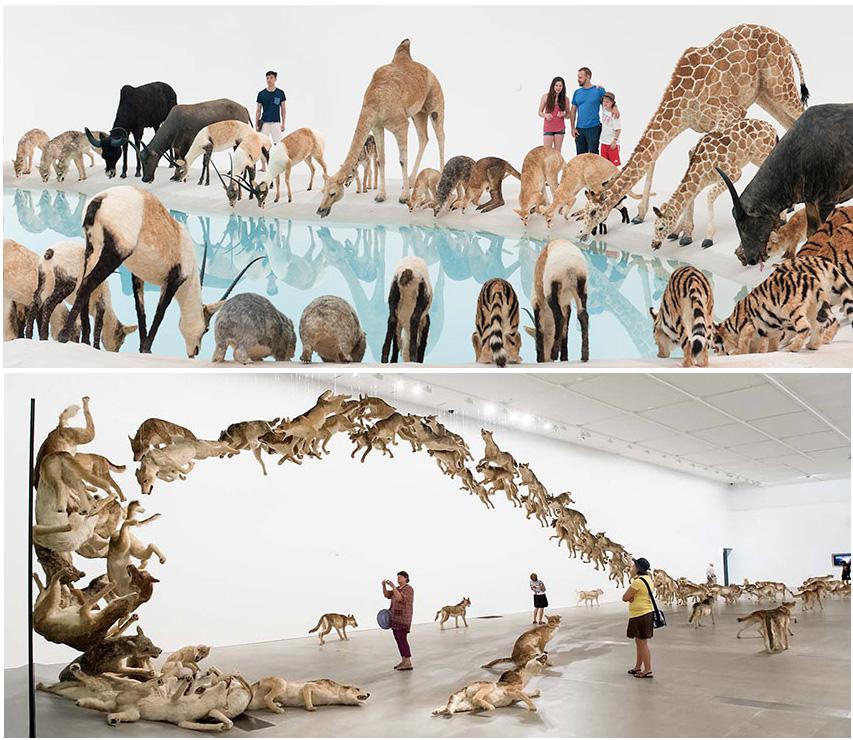 Oeuvres de Cai-Guo-Qiang exposées à la Queensland Art Gallery