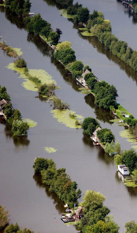 800-swamp.jpg