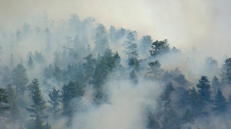 smoke-465x260.jpg