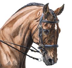 horse_painting_gallery.jpg