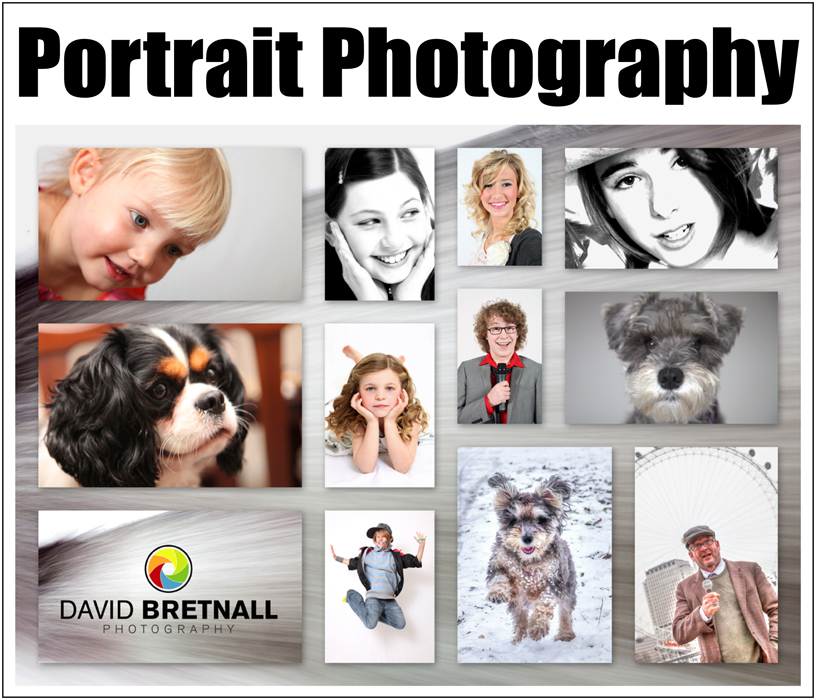 Portrait Ad Copy